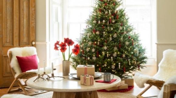 ¿Invitados en casa en Navidad? ¡Hazla lucir! Consejos para pintar tu casa antes de Navidad